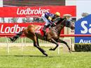 THE DELPHI A WINNING CHANCE AT SANDOWN